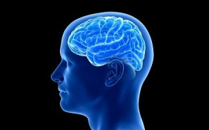 Concussions cause Accelerated Brain Aging
